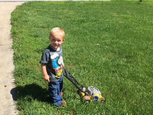 Titus mowing the lawn